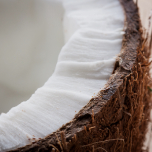 Close-up of a Coconut